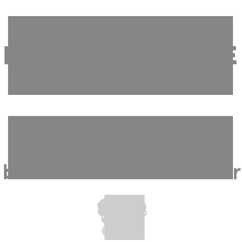 Keizer Motorenrevisie